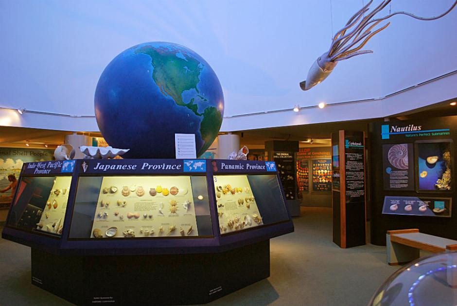 bailey matthews national shell museum