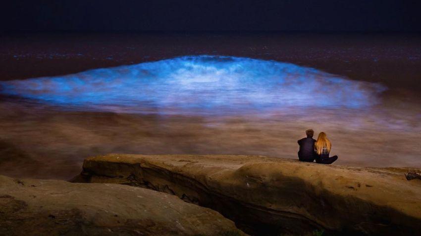 bioluminescent glowing blue waves